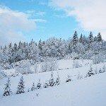 zima_wp2_600